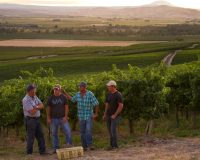 Todd Newhouse, Auction of Washington Wine's 2016 Honorary Grower