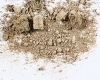 """Getting the """"Dirt"""" on Yakima Valley Soils"""